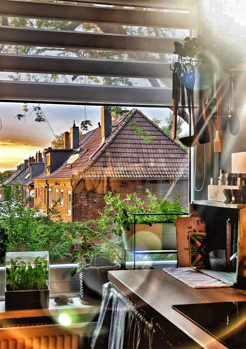 Küche Ausblick